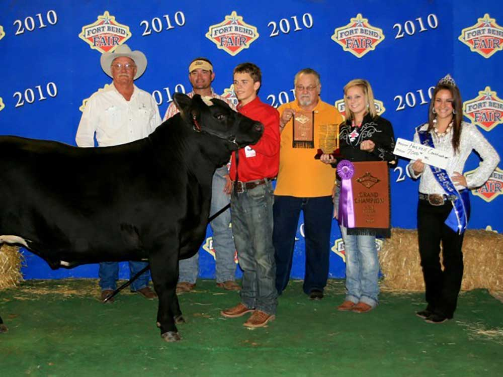 Grand Champion Steer, Fort Bend County Fair
